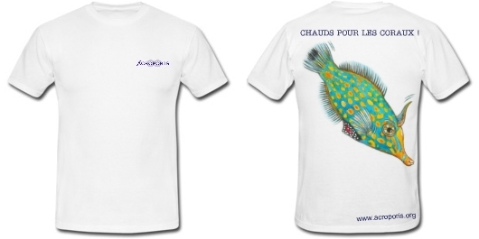 Le Tee Shirt Acroporis