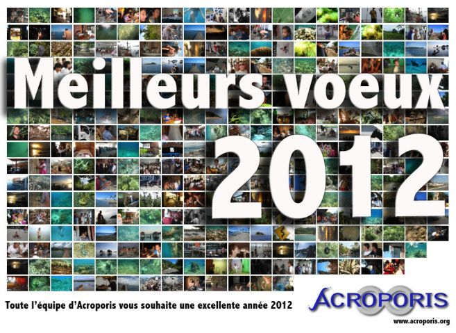 voeux_2012